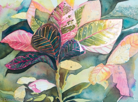 Danae Designs Watercolor Plein Air Crotons Cozomel Mexico